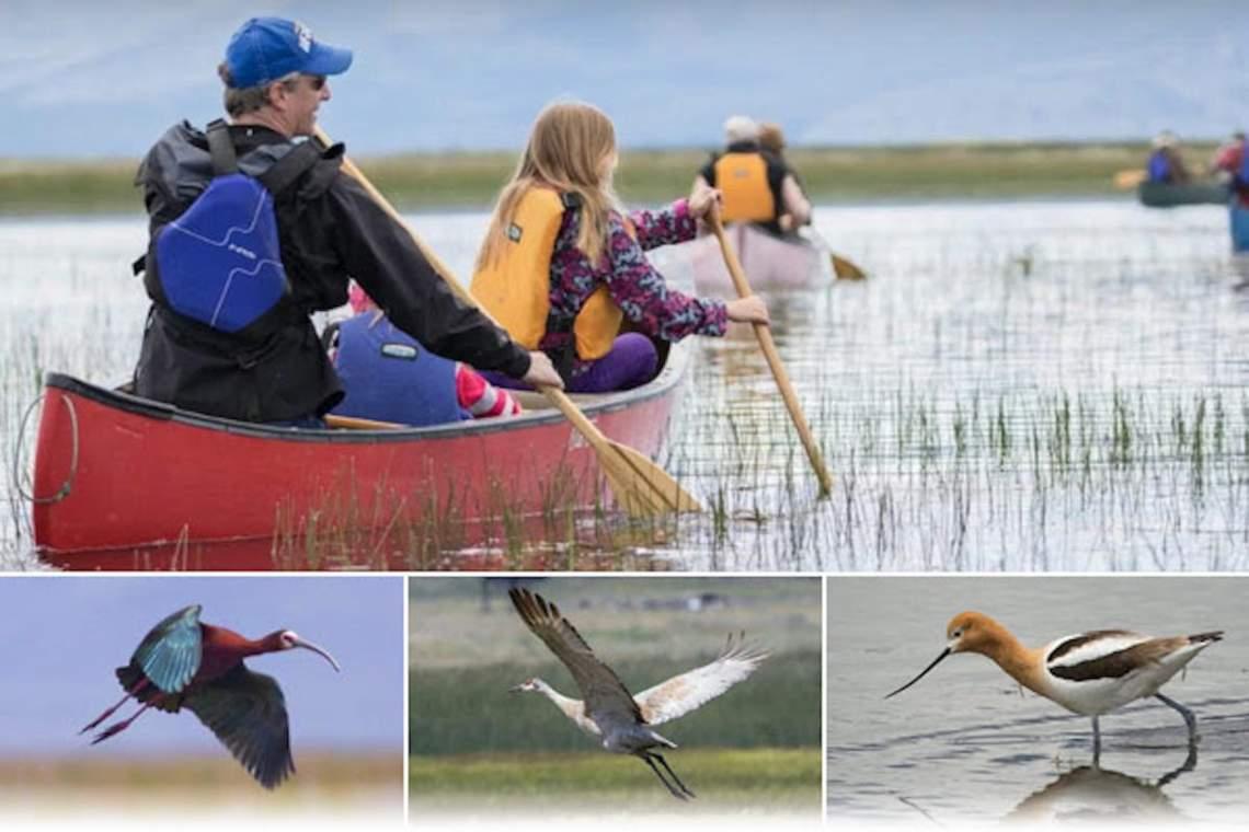 NAk-birding-SierraValley